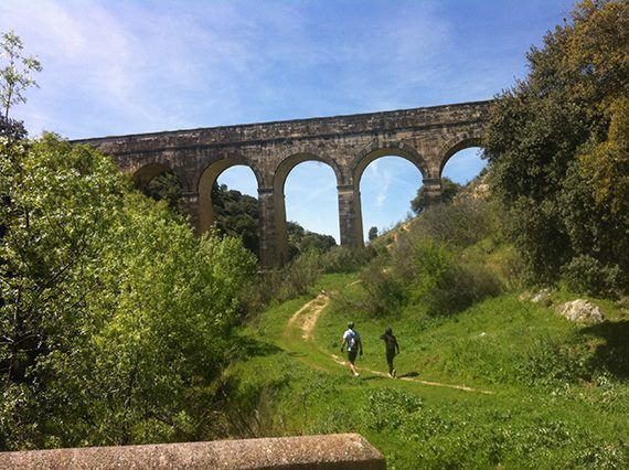 Lee más sobre el artículo San Agustin de Guadalix 3ª prueba del Circuito Tactika Trail