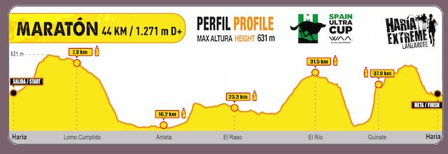 perfil maraton 2017